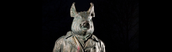 svinehund